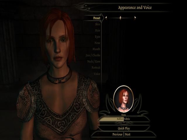 This screenshot put here to point out that Leliana has a default Elf face. I think she's lying about being a shem, guys.